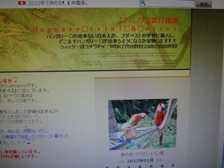 H5-262screen.jpg